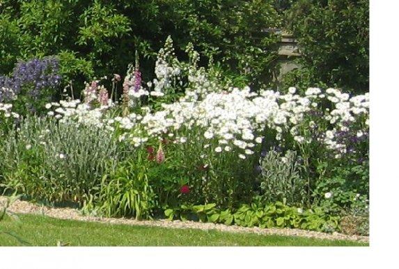 Blue bridge garden design for Herbaceous border design examples
